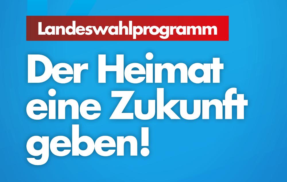 Landeswahlprogramm der AfD Niedersachsen