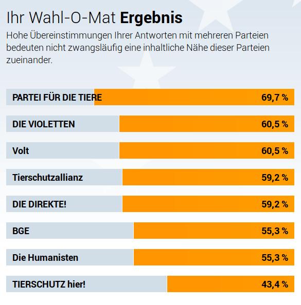 Wahl-O-Mat zur Europawahl: Ergebnis-Beispiel