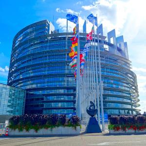 Umfragen zur Europawahl